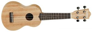 jakie ukulele kupić
